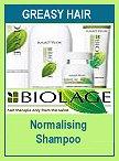 Matrix Biolage Normalizing Systeme Normalizing Shampoo
